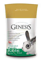 Genesis Rabbit Timothy kanipelletti