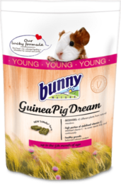Bunny GuineaPigDream Young